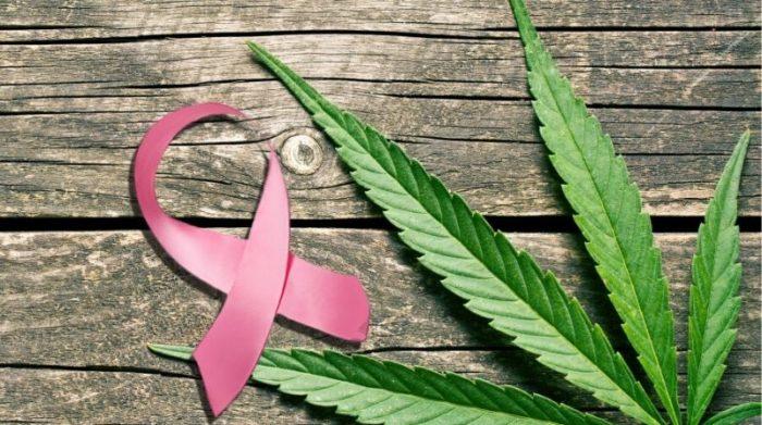 Medical Marijuana for Breast Cancer