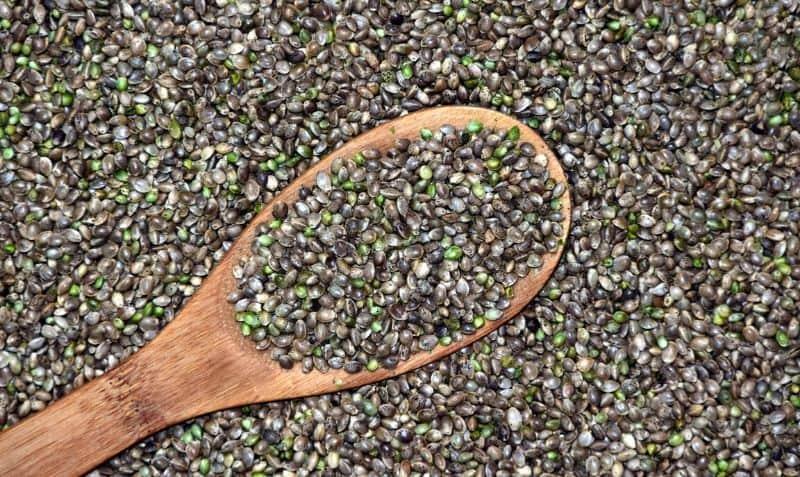 hemp-seeds-benefits