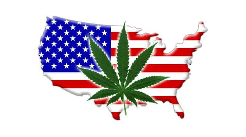 Which 2020 Presidential Candidate Supports Marijuana Legalization?