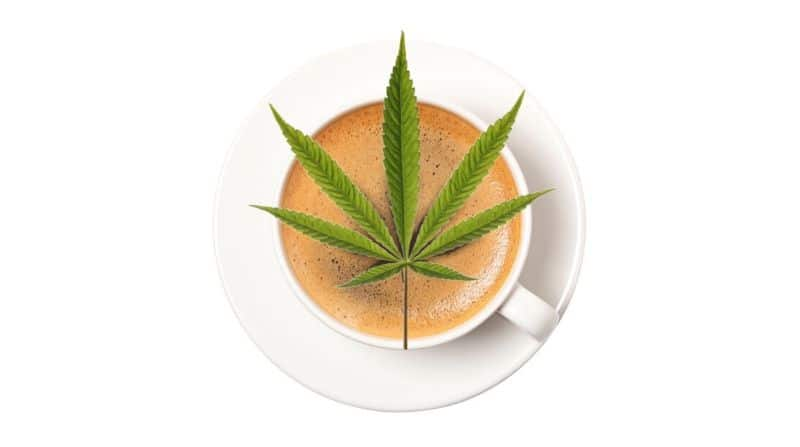 The Best CBD Coffee: Understand The New Frontier of CBD Wellness