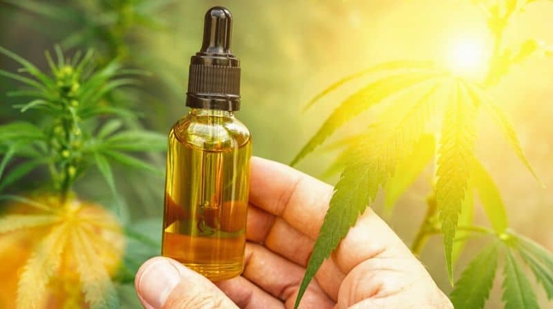Is CBD Oil legal in Vermont: The Law And The Market For CBD in Vermont
