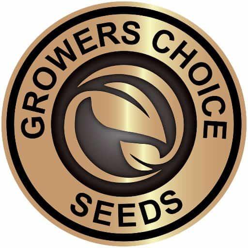 growers choice seedbank