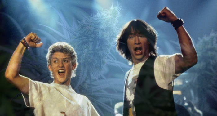 Is bill and ted a stoner movie?
